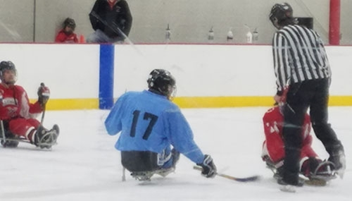 Waukon Teen Takes Part In New Coulee Region Sled Hockey League The